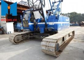 Cho thuê cẩu xích 35 tấn KOBELCO 7035 chuyên nghiệp